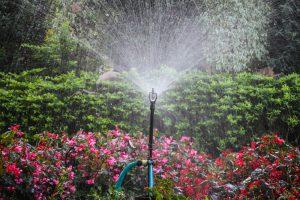 Washington Irrigation