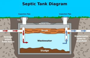Septic Tank Clean Out